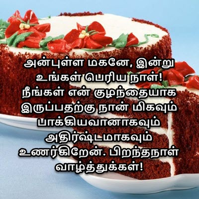 Happy Birthday Wishes For Son In Law in Tamil
